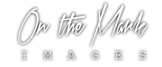 On The Mark Images Retina Logo